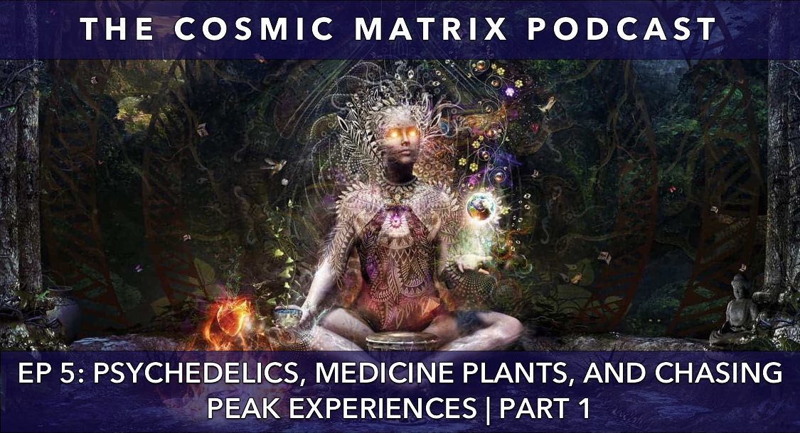 Psychedelics, Medicine Plants, and Chasing Peak Experiences | The Cosmic Matrix Podcast #5 (Part 1)