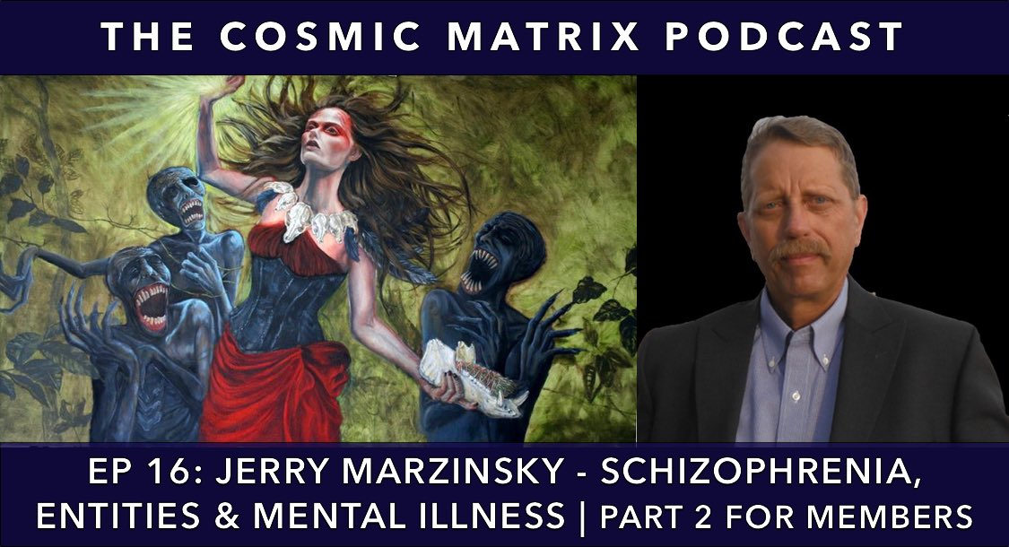 Jerry Marzinsky – Schizophrenia, Entities & Mental Illness | TCM Podcast #16 (Part 2 for members)