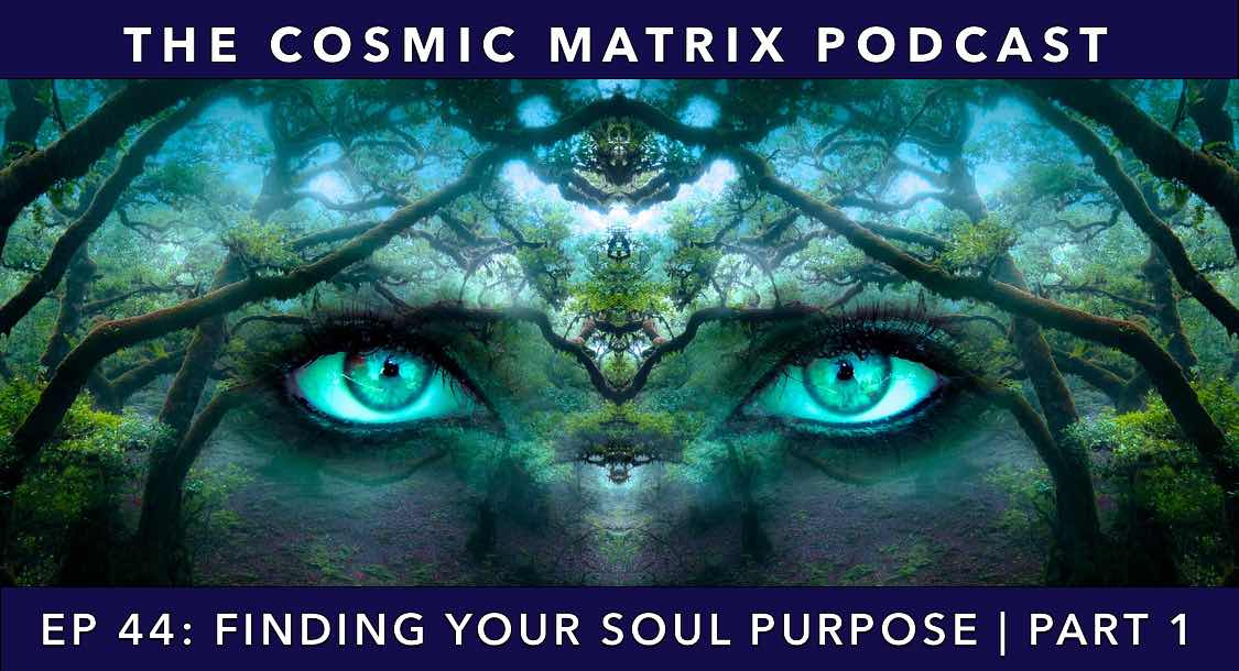 Finding Your Soul Purpose | TCM #44 (Part 1)
