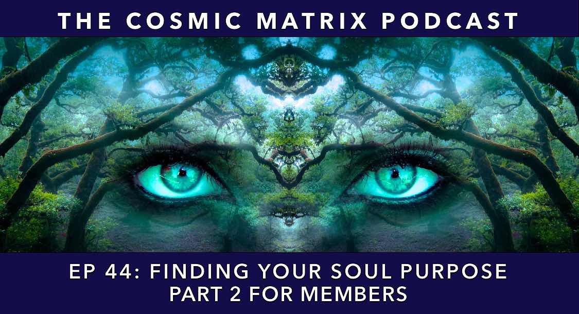 Finding Your Soul Purpose | TCM #44 (Part 2 for Members)